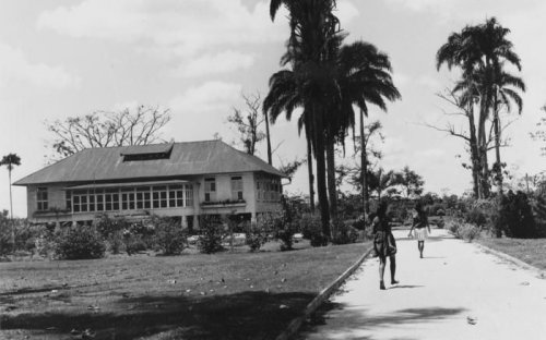 Indentured labourers in Surinam